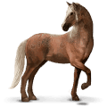 cheval sauvage brumby